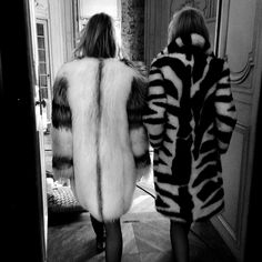 fur with friends