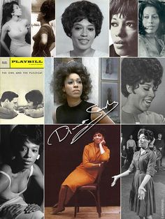 Diana Sands (Aug. 22, 1934 - Sept. 21, 1973) was an American dramatic actress, perhaps most famous for her portrayal of Sidney Poitier's sister in the 1961 film Raisin in the Sun. She starred in the original Broadway production of The Owl and the Pussycat (1964), and made numerous TV appearances in the 1960s & 1970s. She was set to star in the film Claudine (1974) with James Earl Jones, however, she was too ill to accept the role. She died of leiomyosarcoma (cancer of smooth muscle) at aged…