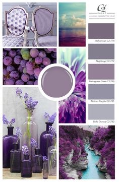 Give your walls the treatment. From soft to bold bright with can add a sense of and an unexpected touch of Purple Paint Colors, Purple Color Schemes, Purple Color Palettes, Colour Pallete, Paint Colors For Home, Color Combos, Purple Wall Paint, Room Colors, House Colors