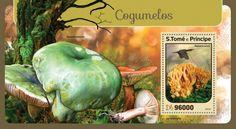 ST16404b Mushrooms (Ramaria aurea)
