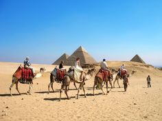 Paquetes Economicos en Egipto con All Tours Egypt