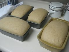 Safely Gathered In: Another Whole Wheat Bread in a mixer Recipe