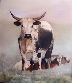 I love nature and animals and the Nguni cow with it's interesting coat is a great subject to paint. Nursery Paintings, Animal Paintings, Farmhouse Paintings, Longhorn Cattle, Cow Painting, Horse Ranch, Cow Art, Wildlife Art, Rind