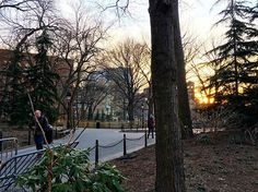 http://washingtonsquareparkerz.com/the-world-is-my-fuse-sunset-washingtonsquarepark-nyc/ | @the.world.is.my.fuse #sunset #washingtonsquarepark #nyc