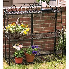 Herb Garden Containers On Pinterest Plant Stands Plant