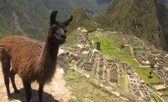 Inca Trail to Machu Picchu — Peru