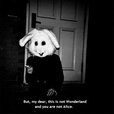 photography girl quote Black and White text quotes weed smoke Typography true b&w Smoking not Alice In Wonderland alice man wonderland bunny rabbit mask costume my Dear 33 alice and wonderland black&white black wonderland alice subtilte alice in wondrland
