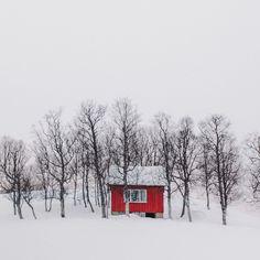 Little red cabin on Lofoten Island, Norway.  Contributed by Christophe Vrankenne. #cabinporn  via ✨ @padgram ✨(http://dl.padgram.com)