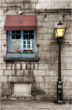 Window And Street Lamp. Pinned by #ChiRenovation - www.chirenovation.com