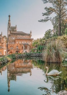 14 Best Places In Portugal To Visit This Year - - Portugal is one epic country to explore and, possibly, one of the most gorgeous countries in Europe! Now, I know, that's a pretty mean feat to say but there are so many places in Portugal. Road Trip Portugal, Best Places In Portugal, Portugal Vacation, Portugal Travel Guide, Braga Portugal, Sintra Portugal, Visit Portugal, Spain And Portugal, Travel Photography Tumblr