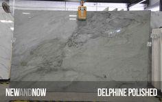 Delphine Polished