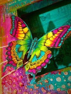 Blue Butterfly Discover Tim holtz butterfly for stampers anonymous Butterfly Painting, Butterfly Wallpaper, Butterfly Art, Rainbow Butterfly, Colorful Butterfly Drawing, Buckeye Butterfly, Simple Butterfly, Rainbow Roses, Most Beautiful Butterfly