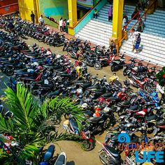 Jakarta has a plethora of scooters and everybody rides them.