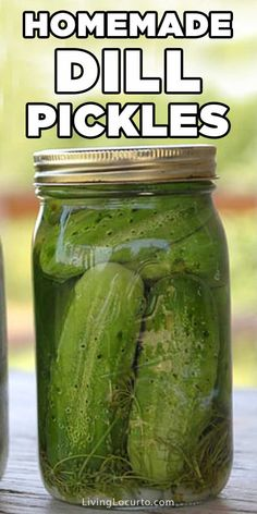 Enjoy an old fashion family recipe for crunchy zesty homemade dill pickles. You'll never buy store bought pickles again! Recipe with photos and step-by-step instructions. No canning needed. Desserts For A Crowd, Winter Desserts, Party Desserts, Hot Fudge Cake, Hot Chocolate Fudge, Fudge Recipes, Dessert Recipes, Party Recipes, Edible Eyes