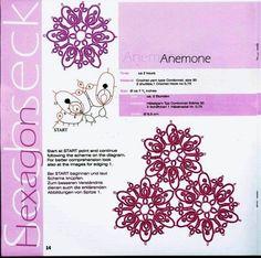 Anemone - Motifs with schemata