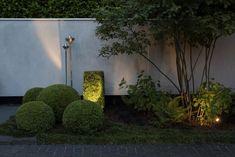 Spots setzen Lichtakzente im dämmrigen Garten