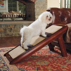 Convertible Pet Step to Pet Ramp