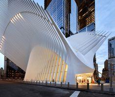 calatrava's soaring oculus at WTC new york by hufton + crow