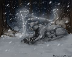 Death of Mosskit by Nayris.deviantart.com on @deviantART