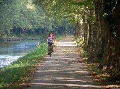 Voie Verte du canal de Garonne  à Damazan