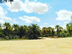 """2 Me gusta, 2 comentarios - JSBenavides   #DiseñaTuMapa (@jsbenavides_) en Instagram: """"Momento de buscar un oasis después de una mañana haciendo que suceda... preparado para una tarde…"""""""