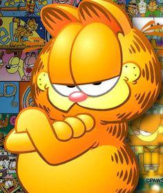 "Search Results for ""garfield wallpaper hd"" – Adorable Wallpapers Gato Garfield, Garfield Cartoon, Garfield Comics, Garfield Pictures, Garfield Quotes, Garfield Wallpaper, Cat Wallpaper, Gato Do Face, Walter Lantz"