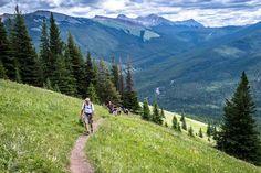Mountain Hiking, Mountain Resort, Bike Trails, Hiking Trails, Trans Canada Highway, Alberta Travel, Alpine Meadow, Cross Country Skiing, Banff National Park