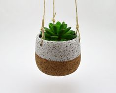 Rustic Hanging Planter by susansimonini on Etsy