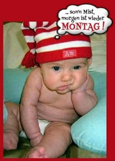 lustiges Bild 'Guten Morgrn .jpg'- Eine von 1401 Dateien in der Kategorie 'guten-Morgen-Bilder' auf FUNPOT.