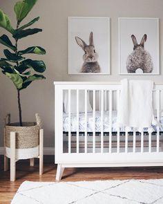 nursery gender neutral baby room animal themed nursery