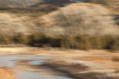 Ghost Ranch West III - Gunnar Plake Photography | Gunnar Plake Photography