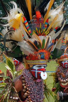 Seeing a Festival (Papua New Guinea). 'Rio's Carnaval has nothing  on the magnificent pageantry of a Highland festival. http://www.lonelyplanet.com/papua-new-guinea/the-highlands