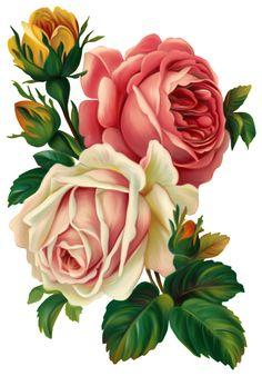 tubes fleurs - Page 47 Arte Floral, Deco Floral, Floral Theme, Clip Art Vintage, Decoupage Vintage, Decoupage Paper, Floral Vintage, Vintage Flowers, Botanical Flowers