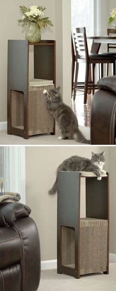 Cat furniture that actually blends in with your decor | Sauder Furniture | VMInnovations | Affiliate Link