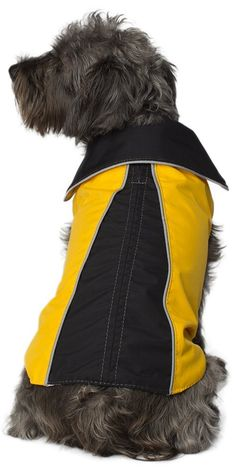 Legitimutt Geometric Storm Tech Dog Raincoat, Size 24, Yellow/Black *** Wow! I love this. Check it out now! : Dog coats