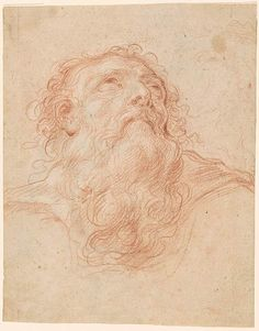Domenico Maria Canuti | Head of a Bearded Old Man Looking Upward, Seen from Below. Verso: Study of the legs and torso of a draped female figure | Drawings Online | The Morgan Library & Museum