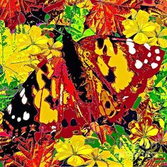 Abstract Butterfly Autumn;Saundramylesart
