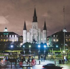 Cathedral: The book tour will see Mr Knapp and Momo appear in Wilton, Connecticut, on May 16 and Brooklyn, New York, on May 19. They will also visit Kentucky, Kansas and Ohio. Above, the border collie hides in a picture showing Saint Louis Cathedral in New Orleans, Louisiana
