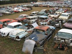 """Dad used to say """"Look! They're having a picnic! Abandoned Vehicles, Abandoned Cars, Abandoned Property, Wrecking Yards, Rust Never Sleeps, Car Barn, Junk Yard, Rusty Cars, Gold Mine"""