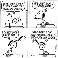 Snoopy and the chocolate chip cookie!