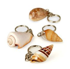 "Natural Seashell Approximately Size: .75W"" to 1.5""L Really catch your guests' eyes with our Natural Seashell Keychain. Each of these purposeful keychains is made from all natural shell in a variety of styles. These beautiful keychains will be easy to find at the bottom of even the most crowded purse or just hang them off of your purse handle to dress it up with that tropical feel. These keychains are great attached to children's backpacks too! Put them on any item you can find to…"