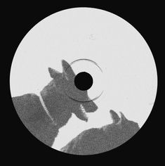 MUNTASIR MOHAMED Arte Punk, Record Art, Album Cover Design, Vinyl Labels, Flash Art, Vinyl Designs, Graphic Design Inspiration, Cover Art, Album Covers
