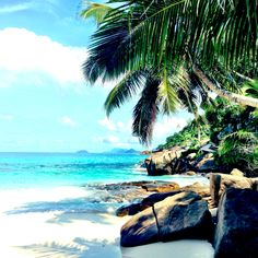 Seychelles Island .. Powder sand , crystal clear water , magnificent sceneries ..