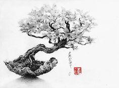 Bonsai by Chris Novel