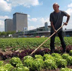Uit je eigen Stad in Rotterdam. Rene aan het werk