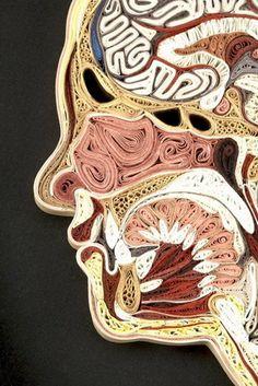 Unique Human Anatomy Art_5