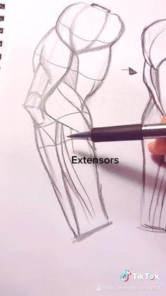 Body Drawing Tutorial, Manga Drawing Tutorials, Drawing Techniques, Drawing Tips, Arm Drawing, Human Anatomy Drawing, Human Figure Drawing, Anatomy Art, Human Body Drawing