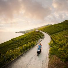Lavaux (Montreux, Suiza) (pineado por @OrgulloWine)
