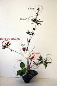 El shin-so-ka , estil que es practica actualment a l'escola Enshu, també anomenat soka o seika en altres escoles d'ikebana, és junt amb ...