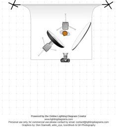gary fong lightsphere instruction sheet
